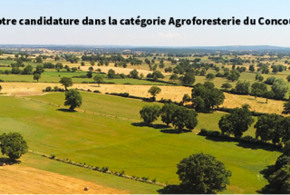 CGA Agroforesterie © Patrick Cochard